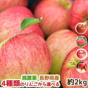 減農薬 りんご 家庭用 約2キロ 葉とらず B品 長野 夏あかり シナノリップ サンつがる シナノドルチェ 産地直送(ジャム1個を同梱サービス付)