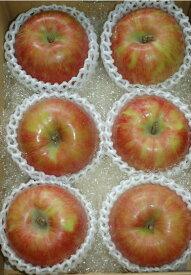 【2021年9月出荷】 サンつがる 特選品質 約2kg 大玉6玉入 りんご リンゴ 林檎 S10