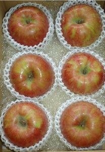 サンつがる 特選品質 約2kg 大玉6玉入 りんご リンゴ 林檎 SSS