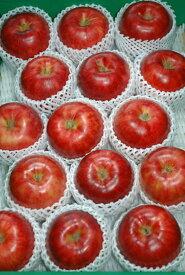 【2021年9月出荷】 サンつがる 特選品質 約5kg大玉13〜16玉 化粧箱入 りんご リンゴ 林檎 S10