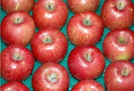 低農薬 サンふじ りんご 贈答用 4.5kg 小玉 18〜20個 リンゴ 林檎 さんふじ サンフジ ギフト