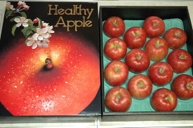 長野産 りんご シナノスイート 贈答向け特選 5kg 大玉12〜14個前後 化粧箱入 リンゴ 林檎 SSS
