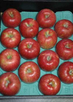 送料無料リンゴ界のサラブレッドシナノスイート贈答向け特選品質プレミアム5kg大玉12〜14個前後化粧箱入りんごリンゴ林檎
