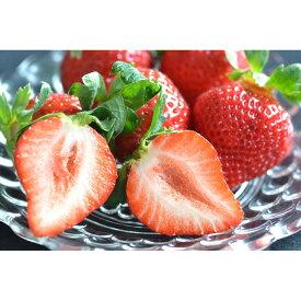 低農薬 福岡産 あまおう いちご 小粒 4パック 1100g 80粒前後 産地直送 苺 イチゴ SSS