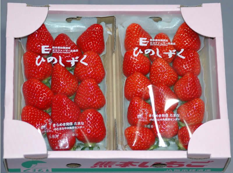 超美麗な新品種イチゴ 熊本県産ひのしずくデラックスパック2パック入