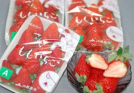 12月出荷分 徳島産 さくらももいちご 4パック 産地箱入 贈答向け S10 お歳暮