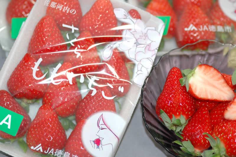 徳島県産 さくらももいちご 1パック 220g入 家庭用 訳あり いちご 苺 イチゴ 12n