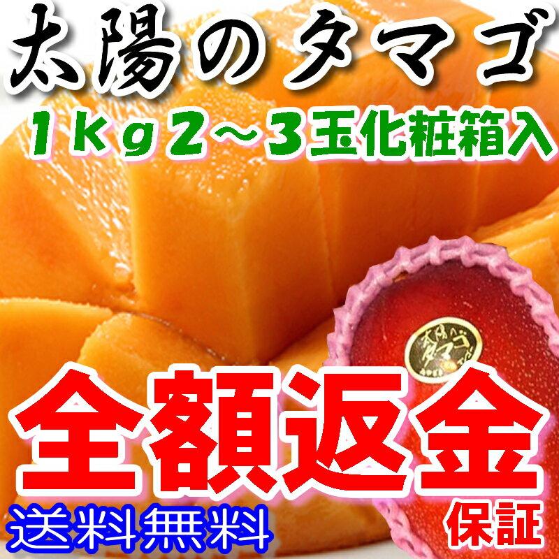 宮崎マンゴー 太陽のタマゴ 2L 〜 3L 2玉 〜 3玉入 約1kg 化粧箱入