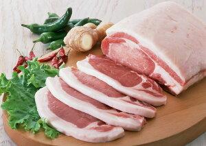 産地直送 鹿児島 黒豚 下ロース とんかつ用 ステーキ用 100g×4 豚肉 豚肉 SSS お中元
