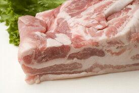 808アベル 鹿児島 黒豚 しゃぶしゃぶ バラ 1kg 産地直送 すき焼き カルビ 生姜焼き ミンチ ギフト 豚肉 訳あり 冷しゃぶ SSS 母の日