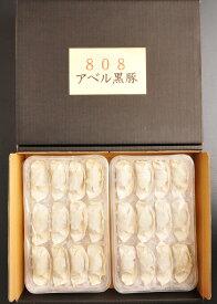 鹿児島 黒豚 使用 健康黒豚餃子 12ヶ入×4パック 産地直送 豚肉 ギフト SSS