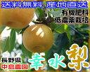 送料無料 産地直送 減農薬 長野産 幸水梨 約9キロ 24〜30個入 ご家庭用 訳あり 幸水 梨 和梨 有機肥料使用