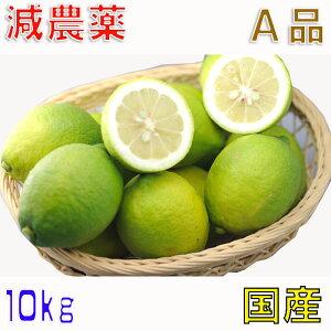 減農薬 国産 レモン 10kg A品 愛媛 瀬戸内 大三島 ore SSS