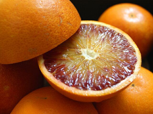 【エントリーでポイント最大35倍+500円OFFクーポン】【訳あり】熊本県天草産 低農薬 ブラッドオレンジ 約5kg ワックス不使用 サイズ混合 タロッコ 産地直送