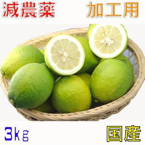 訳あり 減農薬 愛媛 レモン 3kg 加工用 国産 瀬戸内 大三島 ore 3h
