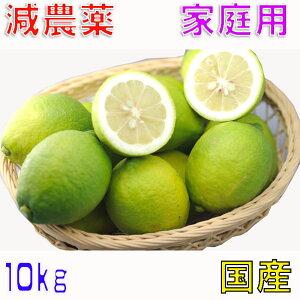 【10月以降分予約】減農薬 国産 レモン 10kg 訳あり 愛媛 瀬戸内 大三島 ore SSS 10g