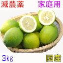 減農薬 国産 レモン 3kg 訳あり 愛媛産 産地直送 大三島 ore NG 5h