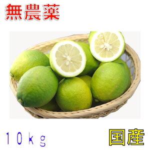 訳あり 国産 無農薬 レモン 10kg 国産 愛媛 大三島 又は 広島 瀬戸内 ore 3h