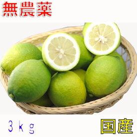 10月以降分予約 訳あり愛媛 無農薬 レモン 3kg 国産 大三島 ore S10 10g
