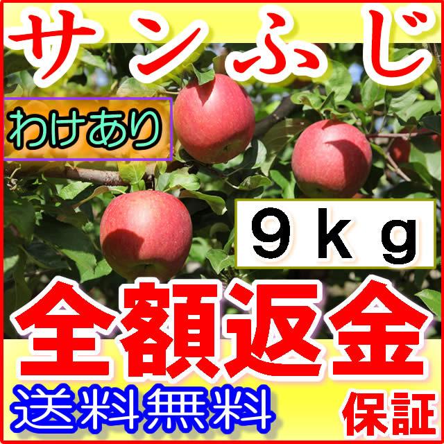 【ポイント10倍+10%OFFクーポン対象】【訳あり】長野 減農薬 サンふじ 約9kg 24〜50個入 産地直送 りんご リンゴ 小山