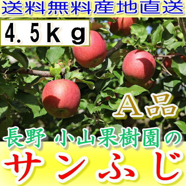 【ポイント10倍+10%OFFクーポン対象】長野 減農薬 サンふじ A品 約4.5kg 12〜23個入 産地直送 りんご リンゴ 小山
