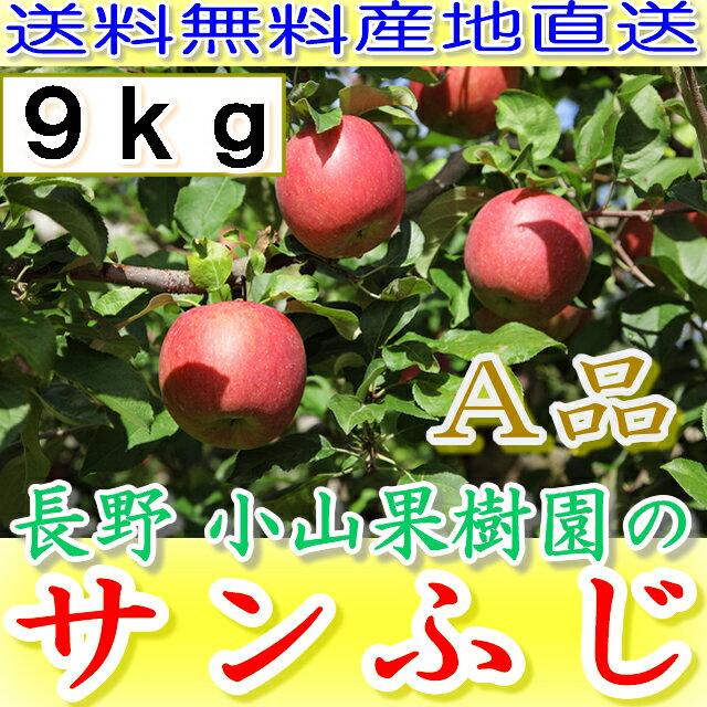 【ポイント10倍+10%OFFクーポン対象】長野 減農薬 サンふじ A品 約9kg 24〜46個入 産地直送 りんご リンゴ 小山