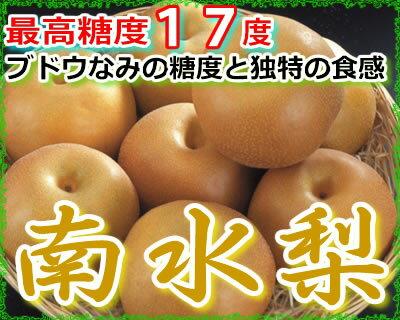 最高糖度17度 梨 長野産 南水梨 贈答用 大玉10〜14個 約4.5kg入 南水 ギフト 秀品