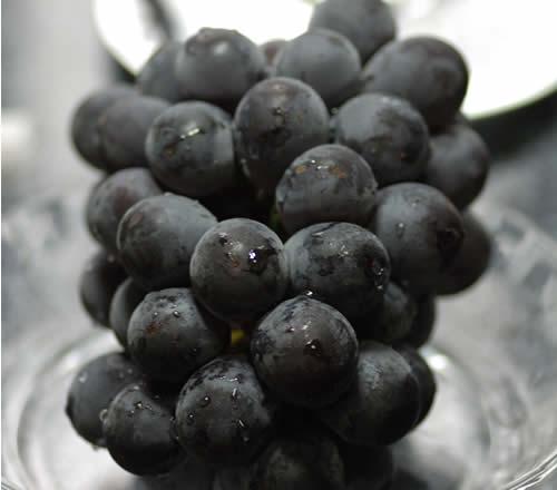 2019年分予約 岡山産 ぶどう ピオーネ 大粒2房入 贈答用秀品 ブドウ 葡萄