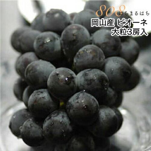 2019年分予約 岡山産 ぶどう ピオーネ 大粒3房入 贈答用秀品 ブドウ 葡萄