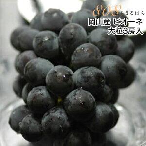 2020年分予約 岡山産 ぶどう ピオーネ 大粒3房入 贈答用秀品 ブドウ 葡萄