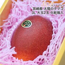 2020年分予約 全額返金保証 マンゴー 太陽のタマゴ 宮崎マンゴー 3L 大玉2玉 約1kg 化粧箱入 太陽のたまご ギフト