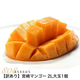 2020年分予約訳あり宮崎 マンゴー ご家庭用 2L大玉1個 約350gパック入 宮崎マンゴー 完熟マンゴー マンゴー