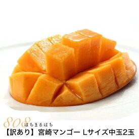 2020年分予約訳あり宮崎 マンゴー ご家庭用 Lサイズ中玉2玉 パック入 宮崎マンゴー 完熟マンゴー マンゴー