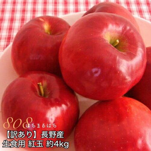 【訳あり】減農薬 長野 生食用 紅玉 りんご 約4kg 小玉16〜30個入 リンゴ 林檎 産地直送 小山