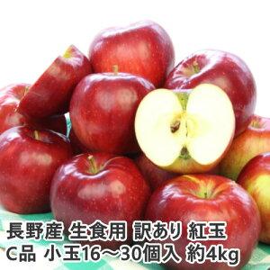 【2021年9月出荷】 訳あり 減農薬 長野 生食用 紅玉 りんご 約4kg C品 小玉16〜30個入 リンゴ 林檎 産地直送 小山 9g