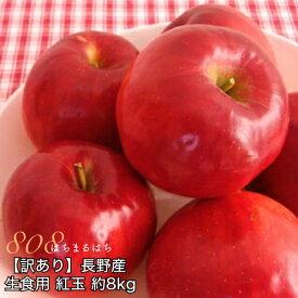 訳あり 減農薬 長野 生食用 紅玉 りんご 約8kg 小玉32〜60個入 リンゴ 林檎 産地直送 小山