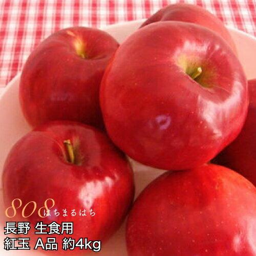 減農薬 長野 生食用 紅玉 りんご A品 約4kg小玉12〜25個入 リンゴ 林檎 生食用 産地直送 小山