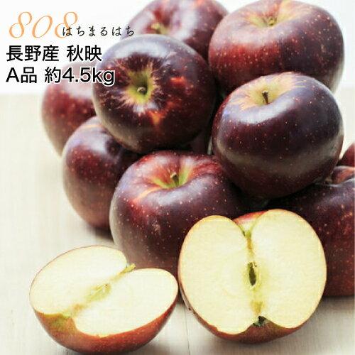 減農薬 長野 秋映 りんご A品 約4.5kg 12〜25個入 秋映え リンゴ 林檎 産地直送 小山