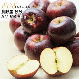 2020年10月以降 減農薬 長野 秋映 りんご A品 約4.5kg 12〜25個入 秋映え リンゴ 林檎 産地直送 小山