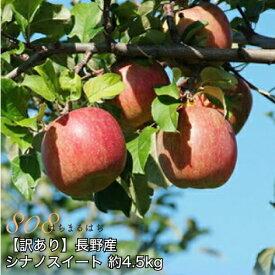 2020年10月以降 減農薬 シナノスイート りんご A品 約4.5kg 8〜25個入 長野産リンゴ 林檎 産地直送 小山