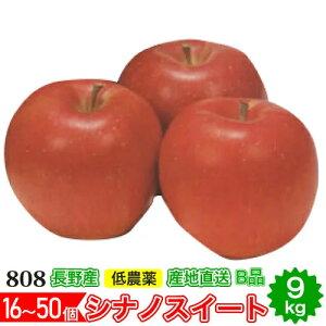 【2021年10月出荷】減農薬 シナノスイート りんご B品 約9kg 16〜50個入 長野産リンゴ 林檎 産地直送 小山 10g