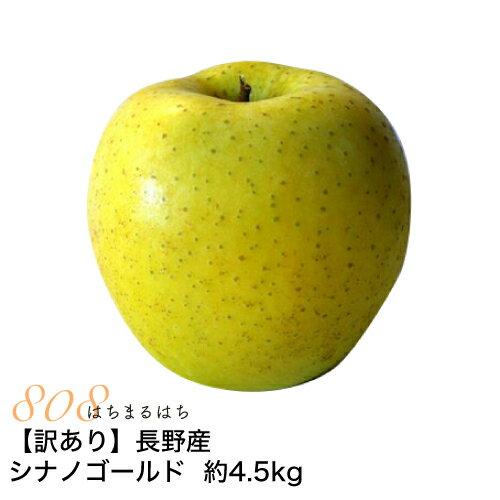 訳あり 減農薬 長野 シナノゴールド りんご 約4.5kg 8〜25個入 リンゴ 林檎 産地直送 小山