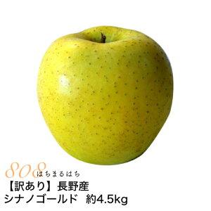 訳あり 減農薬 長野 シナノゴールド りんご 約4.5kg 8〜25個入 リンゴ 林檎 産地直送 小山 SSS 10g