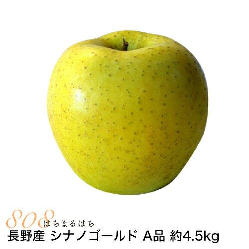減農薬 長野 シナノゴールド りんご A品 約4.5kg 8〜25個入 リンゴ 林檎 産地直送 小山