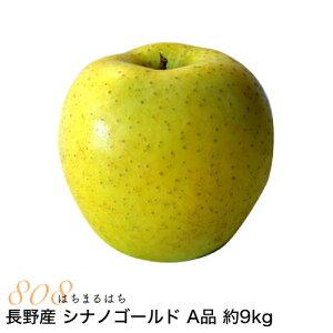 減農薬 長野 シナノゴールド りんご A品 約9kg 16〜50個入 リンゴ 林檎 産地直送 小山 SSS 10g