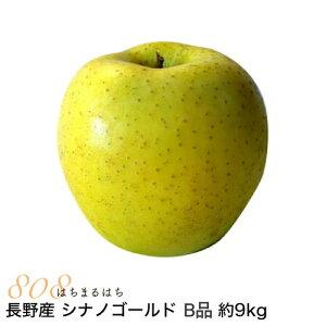 【2021年11月出荷】減農薬 長野 シナノゴールド りんご B品 約9kg 16〜50個入 リンゴ 林檎 産地直送 小山 SSS 11j