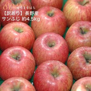 12月以降分予約 減農薬 サンふじ りんご 訳あり 約4. 5kg 12〜25個入 長野 リンゴ 林檎 さんふじ サンフジ 小山