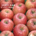 サンふじりんご送料無料産地直送長野減農薬有機肥料栽培林檎ご家庭用完熟リンゴりんご訳ありりんごさんふじりんごサン富士りんごさんフジりんごさんふじりんごりんご長野県産サンふじりんご長野産サンふじりんご低農薬サンふじりんご