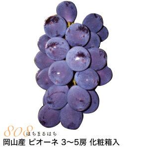 岡山産 ぶどう ピオーネ 1.8kg 3〜5房 化粧箱入 ブドウ 葡萄 産地直送 SSS 9t