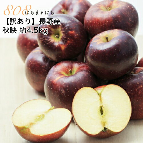 【訳あり】減農薬 長野 秋映 りんご 約4.5kg 12〜25個入 リンゴ 林檎 秋映え 産地直送 小山